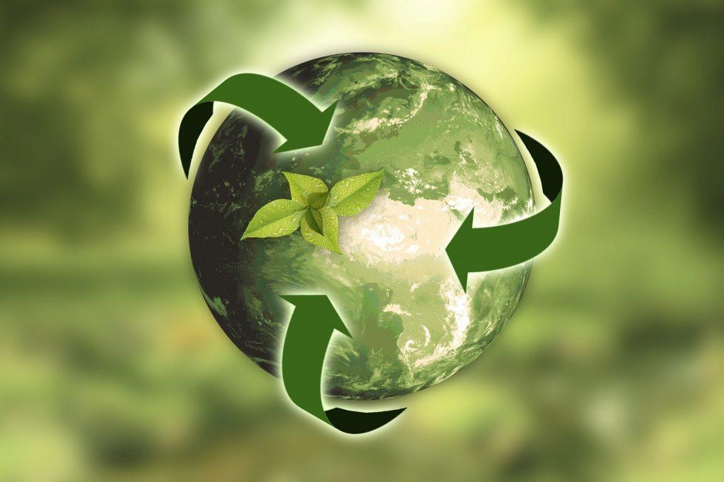 Tulossa: ekologinen verkkokauppa